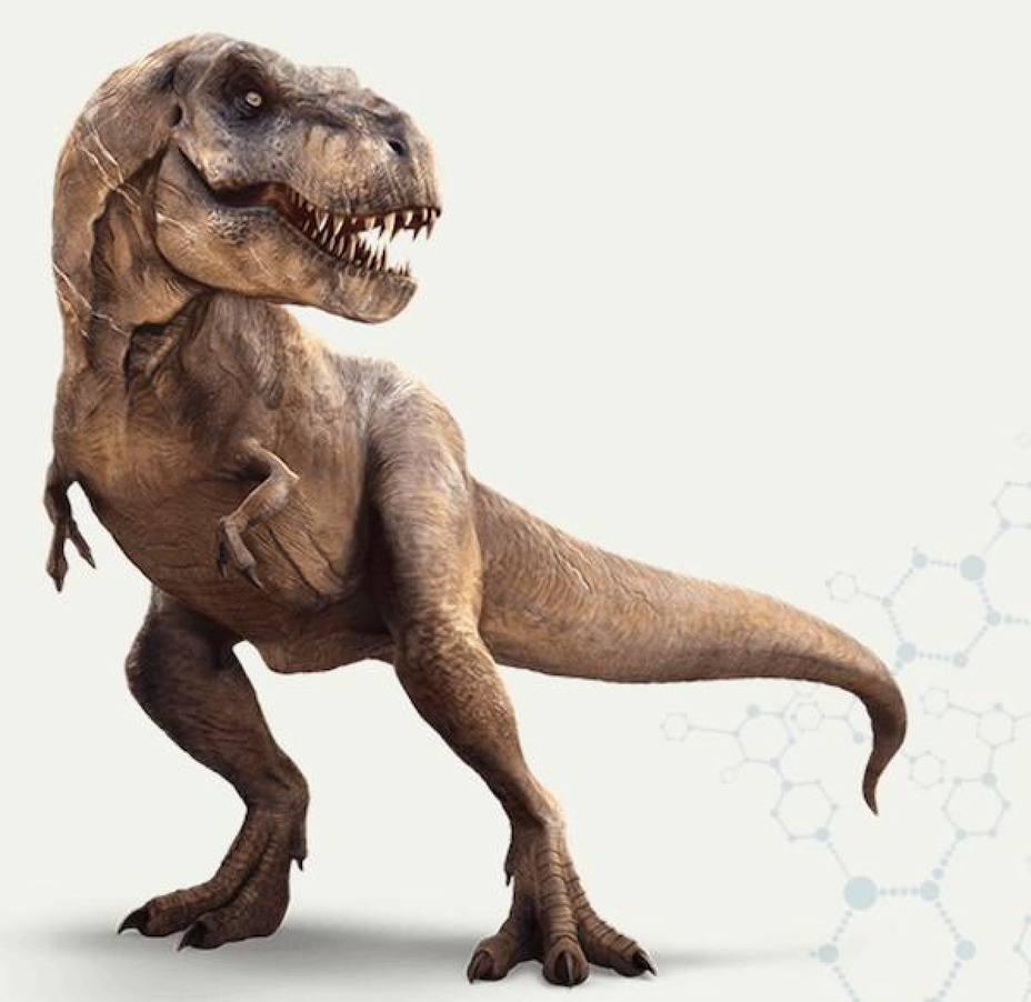 La Historia De Los Dinosaurios Se Reescribe La web de referencia sobre dinosaurios. la historia de los dinosaurios se reescribe