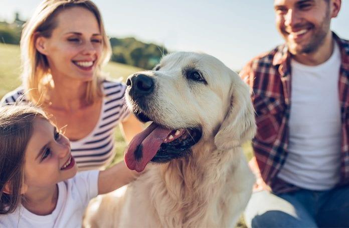 Lacompañía de un animal mejora la calidad de vida de todo ser humano