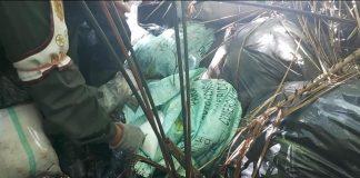 Incautaron nueve toneladas de cocaína y pasta de coca en Zulia