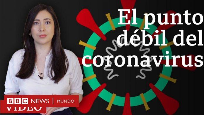 coronavirus, BBC