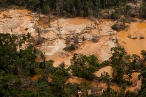 Parque Nacional Canaima Arco Minero Indígenas: tierras y cultura