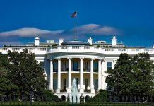 TPS: ¿Cuáles son los beneficios del TPS, otorgado por EE UU?
