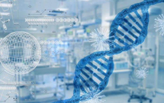 genoma, covid-19, arn