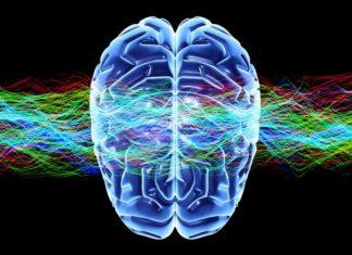 androginia cerebral