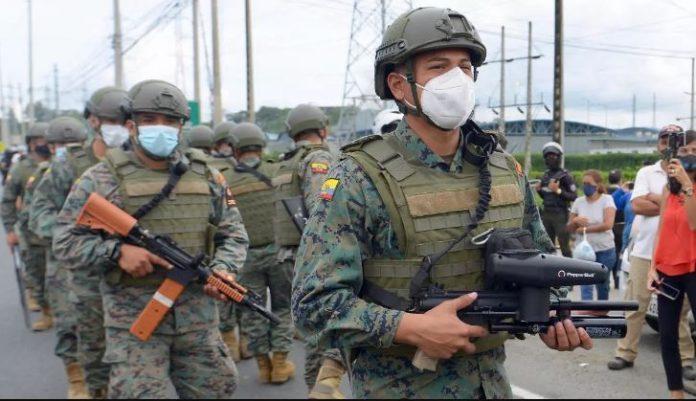 Motines en Ecuador