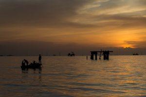 OPEP: Venezuela ha aumentado producción petrolera en lo que va de año