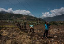 Franquicias criminales mantienen azotados a los productores agrícolas - Conindustria expresó preocupación por escasez de gasoil en Venezuela - gasoil