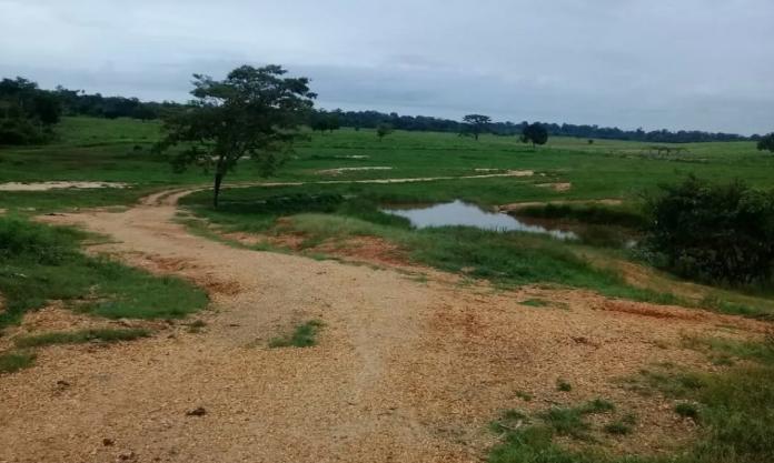 Se registró el viernes un bombardeo aéreo contra finca entre Machiques y Catatumbo