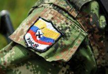 FARC cuerpos