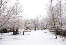 Por primera vez en 14 años la ciudad argentina de Córdoba se cubrió de nieve
