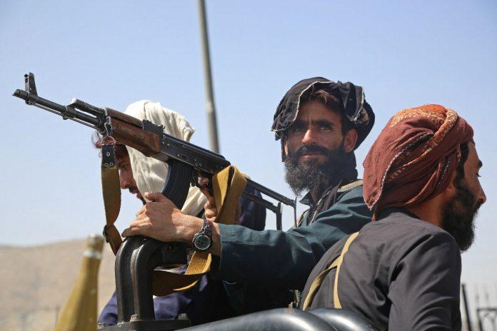 talibanes Al Qaeda